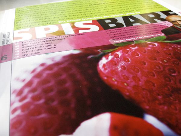 Spis Bare Magazine